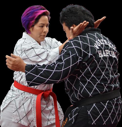 Hapkido Classes Katy Texas